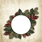 Round frame with colorful leaves Royalty Free Stock Photography