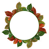 Round frame with colorful leaves Stock Photos