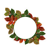 Round frame with colorful leaves Stock Images