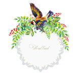 Round frame of colorful watercolor  goldfinch and some leaves Royalty Free Stock Images