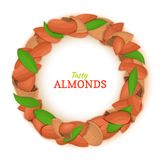 Round frame composed of almond nut. Vector card illustration. Nuts filbert frame, hazelnut fruit in the shell, shelled. Leaves for packaging design food Stock Photography