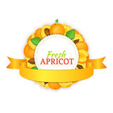 Round frame composed of ripe apricots fruit and gold ribbon. Vector card illustration Royalty Free Stock Image
