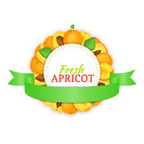 Round frame composed of ripe apricots fruit and green ribbon. Vector card illustration. Royalty Free Stock Photo