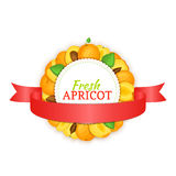 Round frame composed of ripe apricots fruit and red ribbon. Vector card illustration Stock Photos