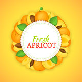 Round frame composed of ripe apricots fruit. Vector card illustration. Royalty Free Stock Photos