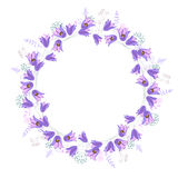 Round frame with contour blue flowers Royalty Free Stock Photo