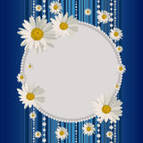 Round frame with daisies Stock Image