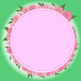 A round frame decorated with a wreath from gradually decreasing, increasing roses with leaves, wedding Royalty Free Stock Photos
