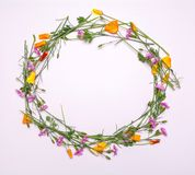 Round frame of delicate flowers. Spring yellow, purple, pink flowers on white background Stock Photography