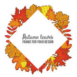 Round frame with fall leaves - maple, oak, rowan, birch Royalty Free Stock Photos