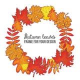 Round frame with fall leaves - maple, oak, rowan, birch Stock Photo