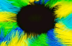 Round frame of feathers for the Brazilian carnival. The colors o. Poster for the carnival. Bright festive feathers in the color of the flag of Brazil Stock Photos