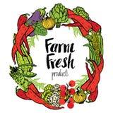 Round frame of fresh vegetables Stock Images
