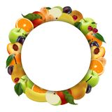 Round frame of fruit on a white background. Realistic style. The form for business. Vector illustration Royalty Free Stock Photo