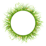 Round frame with grass and flowers Royalty Free Stock Photos