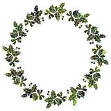 Round frame with holly berries silhouettes. Stock Image