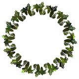 Round frame with holly berries silhouettes. Stock Photo