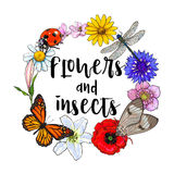 Round frame of insects and flowers with place for text. Round frame, wreath of summer insects and flowers with place for text, sketch vector illustration  on Royalty Free Stock Photography