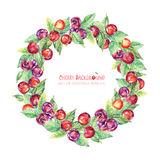 Round frame of leaves and cherries. Royalty Free Stock Photos