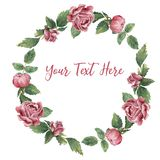 Round frame made of pink blooming roses royalty free illustration