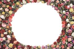 Round frame made of roses flowers on white background with copy space for your text. vintage card, flat lay, top view. summer flor Royalty Free Stock Image