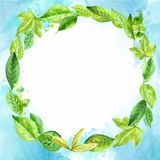 Round frame made of various leaves in watercolor. Hand-painted design elements. blue background Royalty Free Stock Image