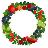 Round frame with many berries royalty free stock photography