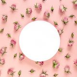 Round frame with pink roses on pink background. Place for text. royalty free stock image