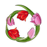 Round frame of red and pink tulip flowers with place for text Royalty Free Stock Image