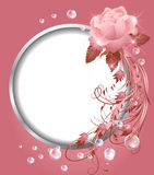 Round frame and rose Stock Images