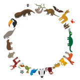 Round frame. Sloth anteater toucan lama bat seal armadillo boa manatee monkey dolphin Maned wolf raccoon jaguar Hyacinth macaw liz. Ard turtle crocodile deer Royalty Free Stock Image