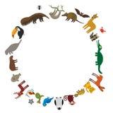 Round frame. Sloth anteater toucan lama bat seal armadillo boa manatee monkey dolphin Maned wolf raccoon jaguar Hyacinth macaw liz Royalty Free Stock Image