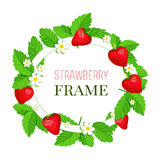 Round frame with strawberries. Isolated round frame with strawberries and green leaves and white flowers. Cartoon style. Vector illustration Royalty Free Stock Photography