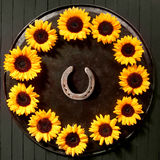 Round frame of sunflowers with a lucky horseshoe Stock Images