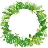 Round Frame  with Tropical Leaves and Flowers. Tropical leaves round frame isolated on white. Summer background with exotic plants and space for text. Floral Royalty Free Stock Photos