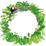 Round Frame  with Tropical Plants and Toucan. Tropical leaves round frame and toucan sitting on liana branch. Summer background with bird, exotic plants and Royalty Free Stock Image