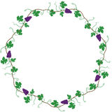 Round frame of the vine Royalty Free Stock Photo