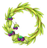 A round frame with violet berries Royalty Free Stock Photography