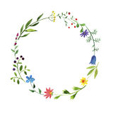 Round frame with watercolor doodle plants and flowers Stock Photos