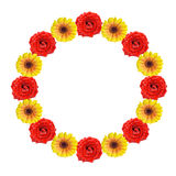 Round frame of wet flowers. Red and yellow flowers in form of round frame Royalty Free Stock Images