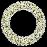 Round frame from white  jasmine flowers Stock Photos