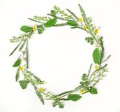 Round frame wreath made of spring flowers and leaves isolated on white background. Flat lay. Top view Royalty Free Stock Images