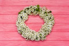 Round frame wreath made of spring flowers and leaves on pink wooden background. Flat lay. Top view. Round frame wreath made of spring flowers and leaves on pink stock photos