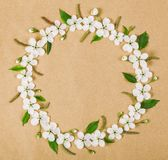 Round frame wreath made of white spring flowers and green leaves on brown paper background. Flat lay. Round frame wreath made of white spring flowers and green Royalty Free Stock Images