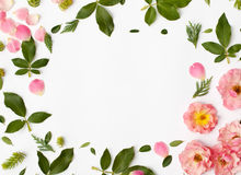 Round frame wreath pattern with rose flowers, petals, succulent Stock Photography