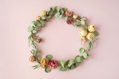 Round frame wreath pattern with roses, pink flower buds, eucalyptus branches stock images