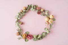 Round frame wreath pattern with roses, pink flower buds, eucalyptus branches stock photography