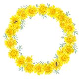 Framework of yellow daisies. Watercolor hand drawn illustration vector illustration