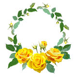 Round frame with yellow realistic roses. Royalty Free Stock Photos