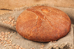 Round fresh bread Royalty Free Stock Photography